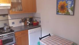 Double room in St Albans, end of August £550/mth