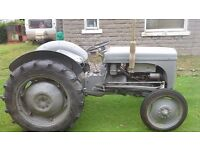 ferguson grey ,approx 1950 ted20 tvo gray tractor in good orignal condition