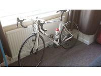 Full Carbon Road Bike like new! Ultegra groupset