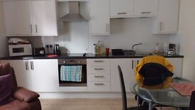 Recently refurbished, fully furnished, spacious one bedroom ground floor flat-66 Great Northern Road