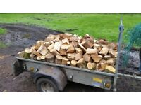 ++ LOGS/FIREWOOD FOR SALE ++ FREE DELIVERY ++ PROCEEDS TO CHARITY ++ LOCAL SCOUTS ++