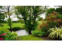 Gardening, Landscape Gardening and Tree Work