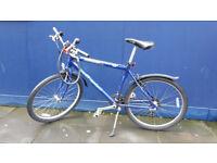 Blue Mountainbike