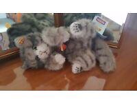 Steiff Grey Kitten