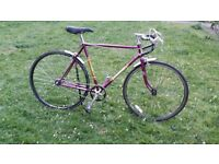 Edwards purple and yellow road bike 21in frame