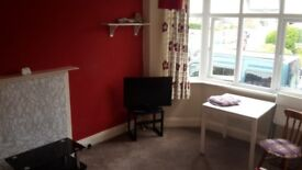 2 bed flat winton / charminster fully furnished