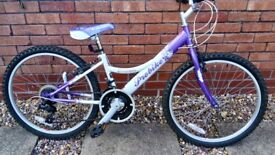 "Girls bike, 12"" frame"