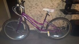 24 inch wheel mountain bike £30