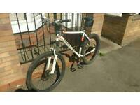 Claude butler Stone River adult mountain bike