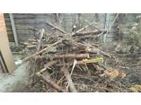 Free log fire wood