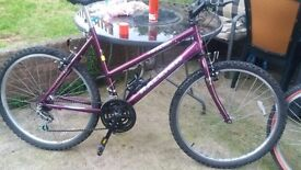 """Raleigh 20"""" max 15 ogre 15 gears good condition all around"""