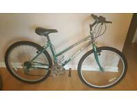 Women's Girls Mountain Bike