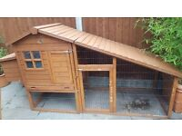 Chicken Coop and Feeding Accessories!!!