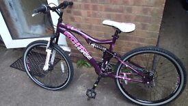 Ironhorse Junior Bike