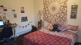 Large Double Room in shared house Chester, £385pcm, bills included