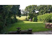 Studio room to rent beautiful location Four Marks/Alton/Hampshire