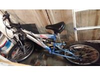 "12"" bike only £13"