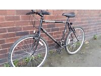 Mountain Bike with Road Forks - Perfect Commuting Bike