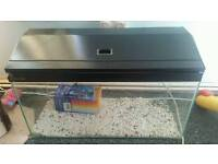 fish tank 2.4 feet