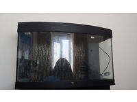 Juwel Bow fronted Aquarium 180 liters with Juwel matching stand / cabinet