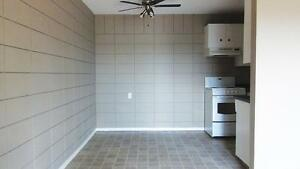 NEWLY RENOVATED APARTMENTS**OLIVER AREA**FREE INTERNET OR CABLE Edmonton Edmonton Area image 4