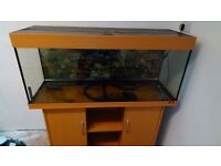"""4 Foot Fish Tank 120 inches wide 18"""" high by 16"""""""