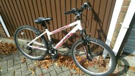 Mountain bicycle Asriel Indi
