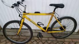 Gents Scott Rockwood Mountain Bike £60