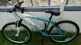 Ladies/girls mountain bike