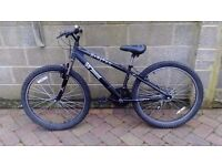 Boys Mountain Bike for Sale