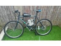 80cc engine pedal bike