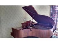 Neindorf Baby Grand Piano