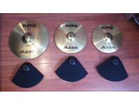Alesis DM5 Pro Electronic Drum kit (Alesis kit cymbal pads AND Surge cymbals)