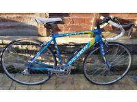 """Brilliant 21"""" frame RALEIGH AIR LITE 100 Road Bike"""