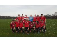 Wandsworth Borough Football Club: New Players Wanted