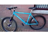 "Specialized Stumpjumper MTB Mountain Bike Hardtail 19"" Frame"