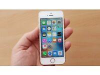 Apple iPhone SE in Gold - Apple Warranty