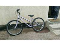 Ladies / Girls Mist Coventry Eagle 15 Speed Bicycle