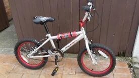 Raleigh Fury Bike
