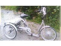 Powabike Trike Electric Tricycle
