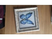 Square butterfly print in frame (shabby chic)