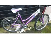 STEALTH LADIES MOUNTAIN BIKE, 19 INCH FRAME, 26 INCH WHEEL'S, 18 GEARS, GOOD CONDITION..