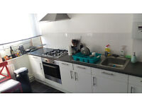 Short term let until end of September. Double room in Waterloo, share with gay male professional.