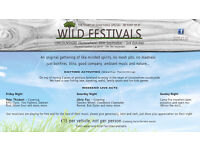 Musicians wanted for the new Wild Festivals first event in Lincolnshire - Festival Camping Party