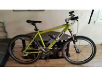 carera bike