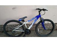 Front suspention mountain bike..............£45