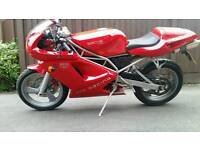 SACHS XTC 125 CC . NOT WRX R125 APRILIA RS 125 CBR CBF CBT LEGAL