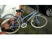 Vintage Raleigh mountain bike