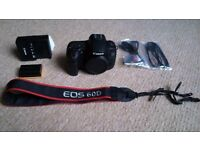Canon EOS 60D with lenses, bag and memory card