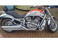 Harley Davidson 100th Anniversary Limited Edition VROD